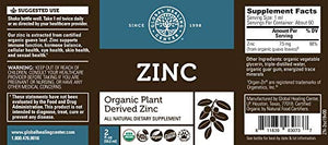 Global Healing Center Zinc, USDA Organic Liquid Plant Based Zinc from Guava Leaves for Immunity, Hormone Balance, and Healthy Aging (2 Oz)