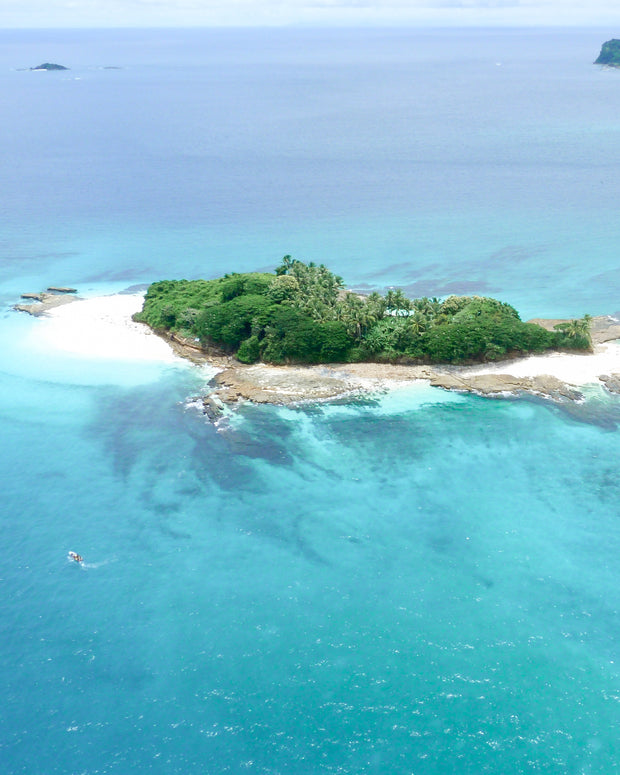 Dreamy Private Island Proposal