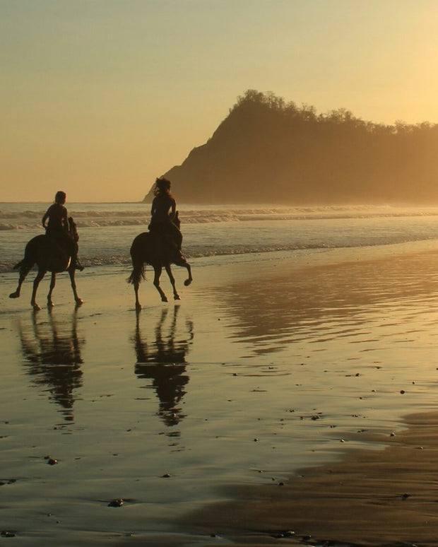 Enchanting Horseback Sunset Beach Proposal