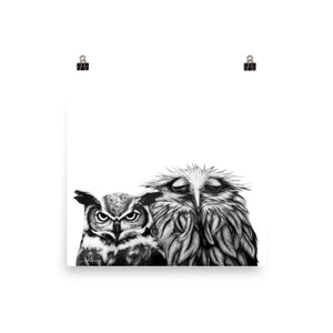 New Couple Owl Print