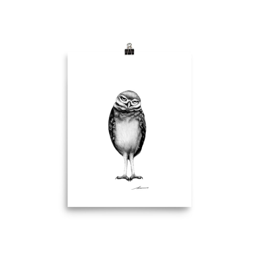 Spencer Owl Print