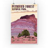 Painted Desert - Petrified Forest National Park (12X18 Art Print, Wall Decor Travel Poster)