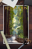 Redwoods State Park - Pathway In Trees (12X18 Art Print, Wall Decor Travel Poster)