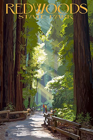 Redwoods State Park - Pathway In Trees (9X12 Art Print, Wall Decor Travel Poster)