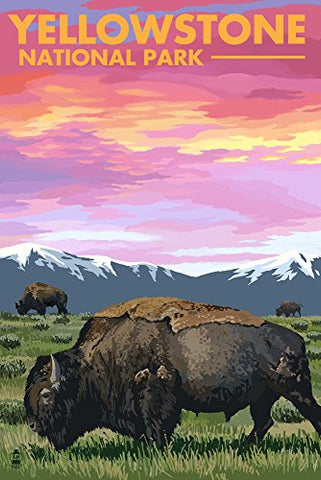 Yellowstone National Park - Bison And Sunset (12X18 Art Print, Wall Decor Travel Poster)