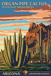 Organ Pipe Cactus National Monument, Arizona (12X18 Art Print, Wall Decor Travel Poster)