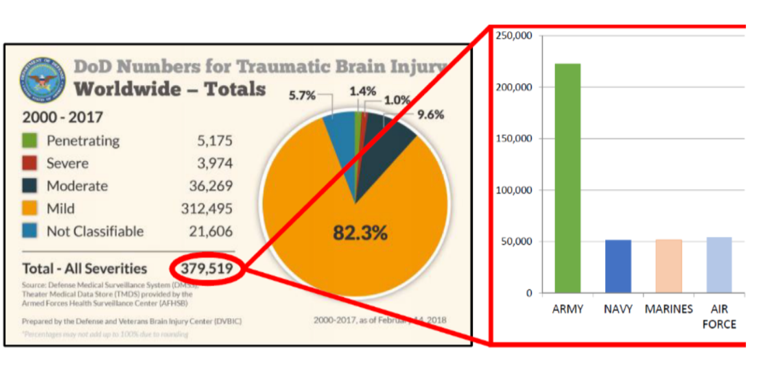 Statistics on brain injuries in the military supplied by DOD