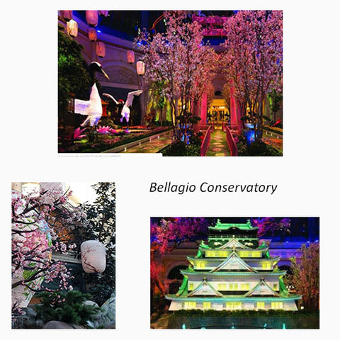 Bellagio's Conservatory with images of Japan's cherry blossoms featured in a blog post by Jackie Vujcich of Colorado Creations Quilting