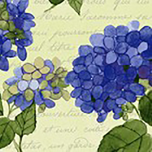 Clusters of blue hydrangeas on cream background fabric available at Colorado Creations Quilting