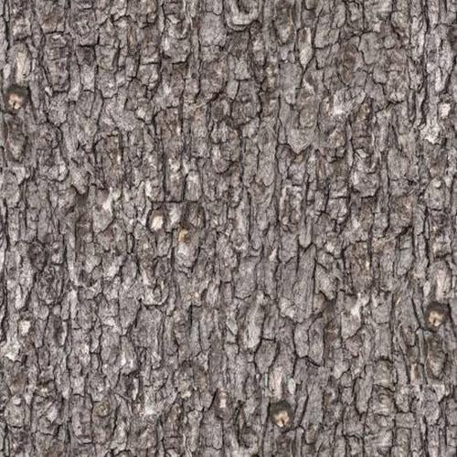Gray Pine Bark Texture Cotton Fabric available at Colorado Creations Quilting