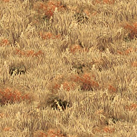 Golden grass with clumps of wildflowers, cotton fabric by Quilting Treasures