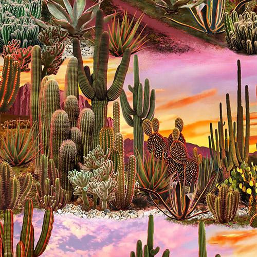 This desert scene features cacti such as barrel, sagauro, and yucca just to name a few. They are situated in front of mountains under a sunset sky of purples and golds.