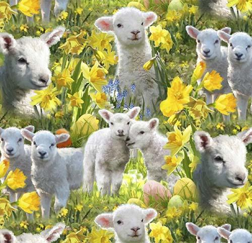 This cotton fabric features life-like adorable lambs in a field of daffodils.  Available at Colorado Creations Quilting