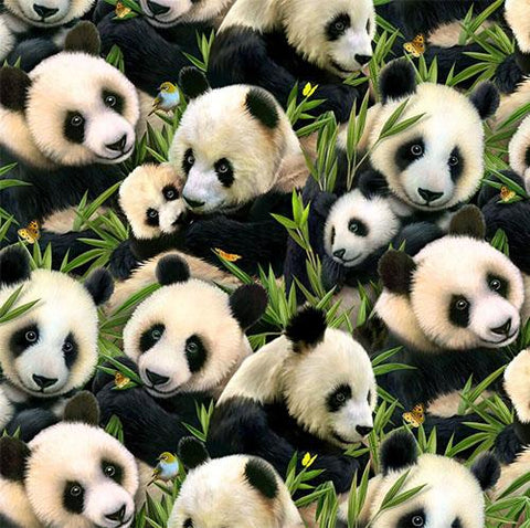 This delightful fabric features packed mom and baby panda bears among their favorite eucalyptus plant. Available at Colorado Creations Quilting