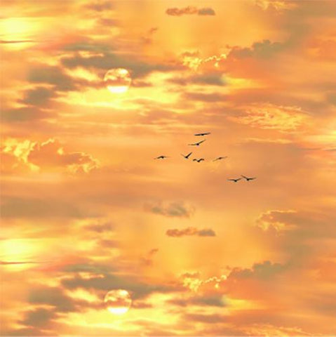 Featured in this 100% cotton fabric is a beautiful rich orange sky, silhouette flying geese and a hint of the sun.