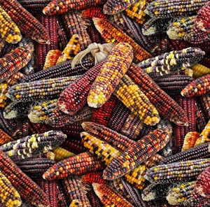 This 100% cotton fabric features fall corn in shades of red and yellow.   Great for use in applique, quilt or craft projects for autumn.