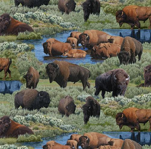 These buffalos are drinking at the water's edge and wandering through brush cotton fabric is available at Colorado Creations Quilting