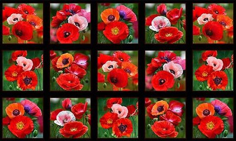 This panel features 15 squares with realistic poppies in each. It's sure to make a great beginning to your next quilt or craft project. They'll work perfectly for block centers too.. Available at Colorado Creations Quilting