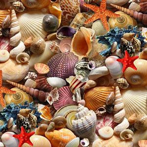Multi-Colored  Packed Seashells Cotton Fabric available at Colorado Creations Quilting