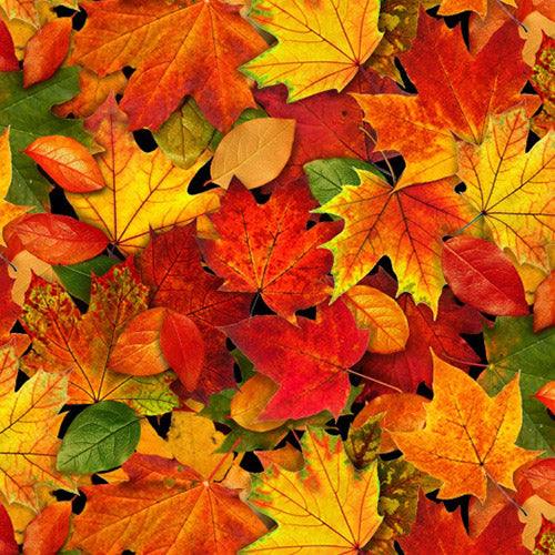 Autumn maple leaves in red, gold, rust, green fabric available at Colorado Creations Quilting
