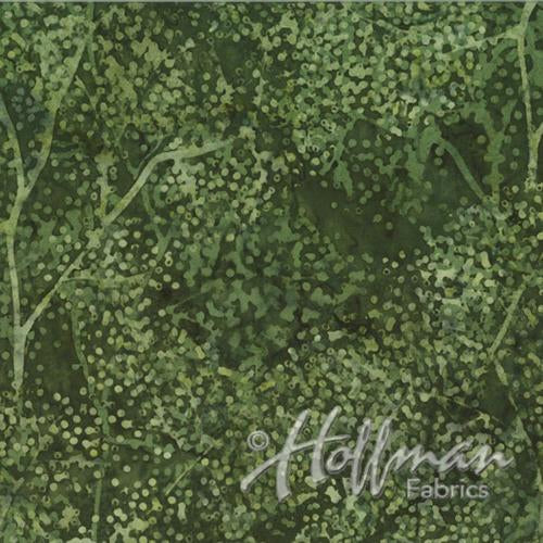 "branches with ""dotty leaves"" in shades of olive green"