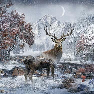 Stag is staring straight ahead in the middle of a snowy meadow