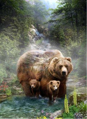 Two 3 bears with evergreen trees and mountain images