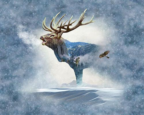 elk blended with images of evergreen trees and eagles available at Colorado Creations Quilting