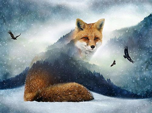 fox blended with images of evergreen trees and eagles available at Colorado Creations Quilting