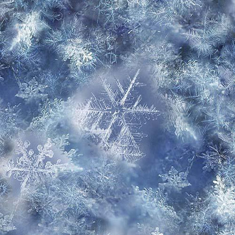White delicate snowflakes on blue