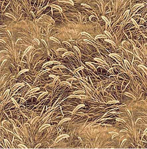 Detailed long-stemmed-wild grass swaying in the breeze in shades of tan and brown is perfect for mountain meadows or prairies. Use it in your landscape, art and craft projects. A great texture to add to your stash. Part of the Pheasant Run collection by Northcott Available at Colorado Creations Quilting