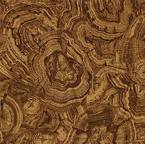 This fabric feature a cross-cut of the wood showing the tree trunk's rings in varying shades of brown.