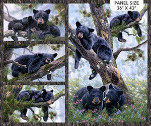 Cotton fabric Panel by Northcot features baby bears lounging in tree branches.  Available at Colorado Creations Quilting