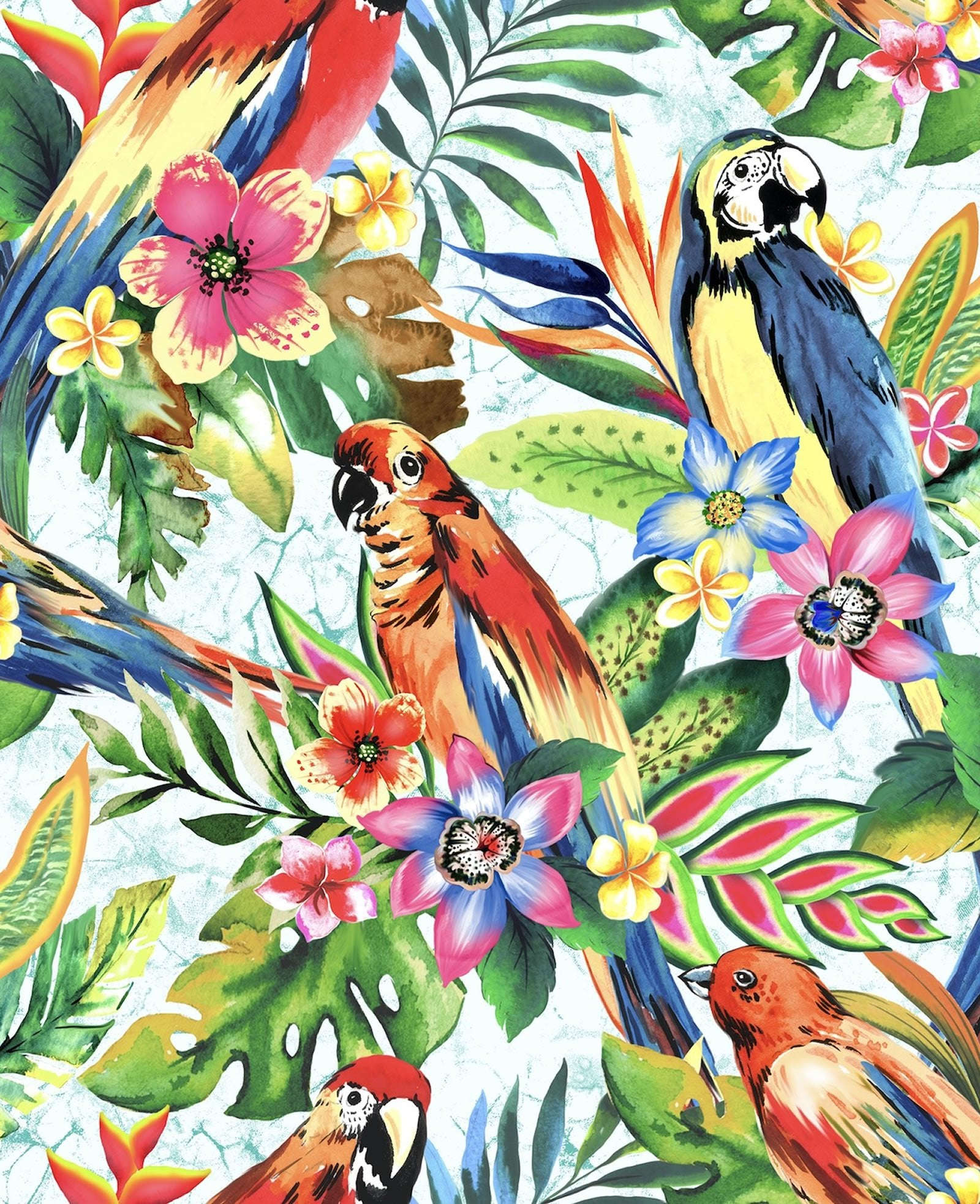 This cotton fabric features brightly-colored parrots are nestled in tropical flowers and leaves on a blue background. Available at Colorado Creations Quilting