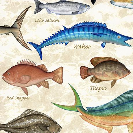 saltwater fish (shark, salmon, tilapia type) displayed on a cream background fabric available at Colorado Creations Quilting