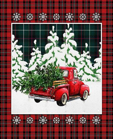 Imagine picking out the perfect tree and putting it in the back of your old red pickup. This panel is the perfect size for a small lap quilt as it already is bordered by a nice red and black plaid with snowflakes.  Available at Colorado Creations Quilting