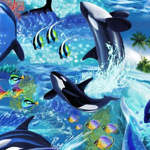 Images of killer whales and other tropical fish on the ocean floor available at Colorado Creations Quilting