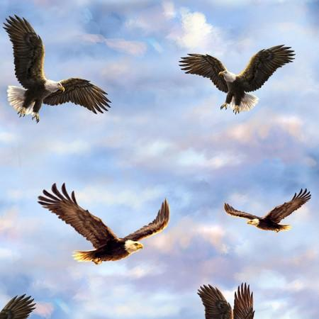 Bald eagles soar through the a sky of blue spotted with white fluffy clouds.