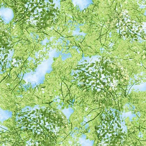 Delicate green leaves on  branches in a blue sky.  This cotton fabric  is available at Colorado Creations Quilting