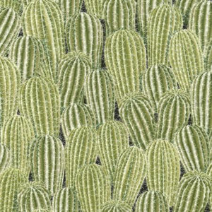 Packed green Saguaro Cactus