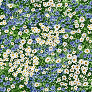 Daisy and Cornflower Wildflowers fabric by Timeless Treasures available at Colorado Creations Quilting