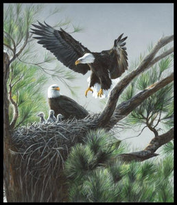 Features two eagles and their young in a nest