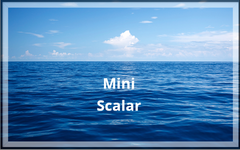 Shealy-Sorin Mini - Scalar