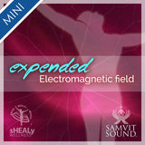 Shealy-Sorin Mini - Expanding Your Electro Magnetic Energy Field