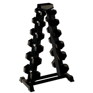 York Barbell | FTS Series Vertical Dumbbell Rack - XTC Fitness - Toronto, Canada