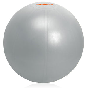 Iron Body Fitness | Pro Series Gym Ball - 1000lb (Anti-Burst) - XTC Fitness