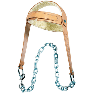 Grizzly Fitness | Leather Head Harness - XTC Fitness - Toronto, Canada