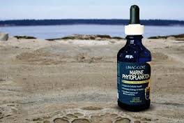 Marine Phytoplankton drops - This Health