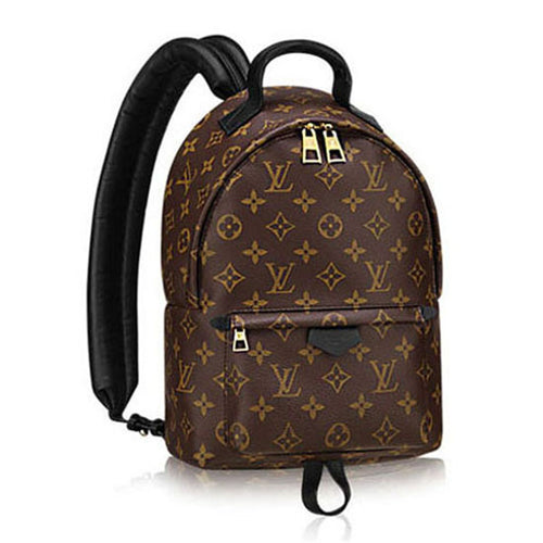Louis Vuitton Palm Springs Backpack 3 Size