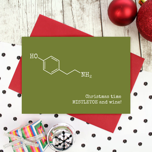 Christmas time, Mistletoe and wine card